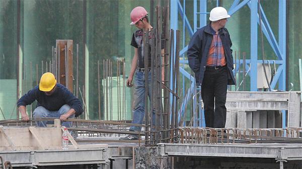 constructii, servicii, crestere, economica