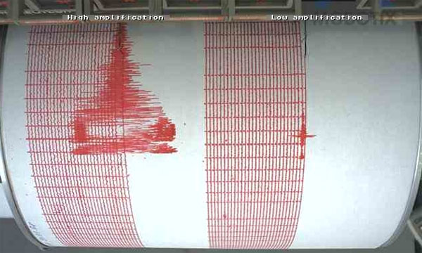 ciutremur-grafica