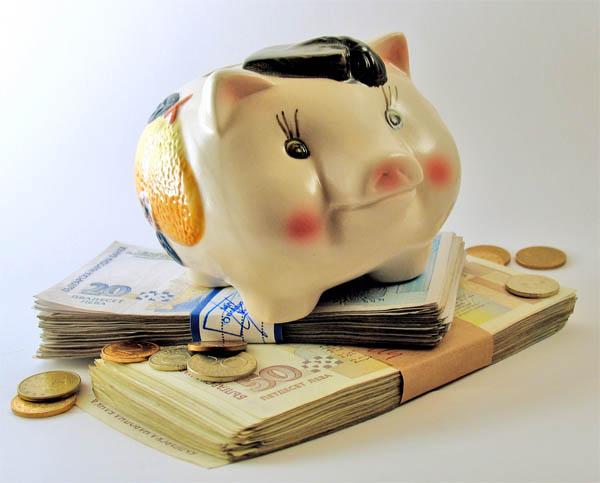 pusculita-bani