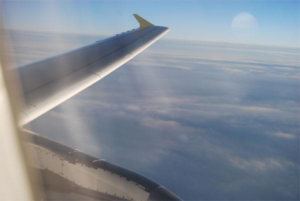 aripa-avion