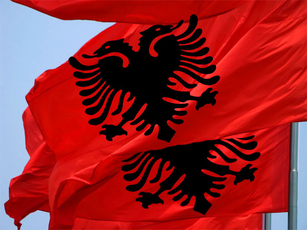 steag-albania-tirana