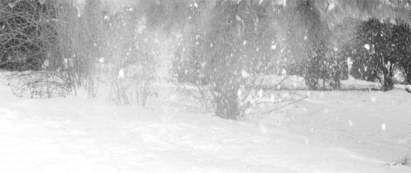 zapada-iarna-peisaj-alb-negru