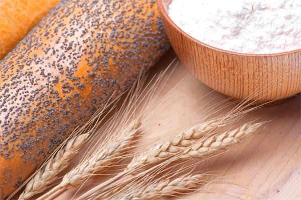 paine-grau-faina-agricultura