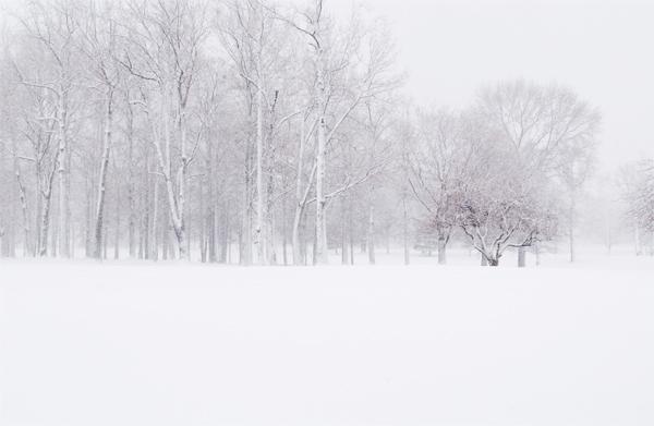 ninsoare-iarna