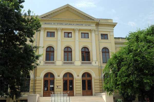 muzeul-grigore-antipa-bucuresti-arhivafoto