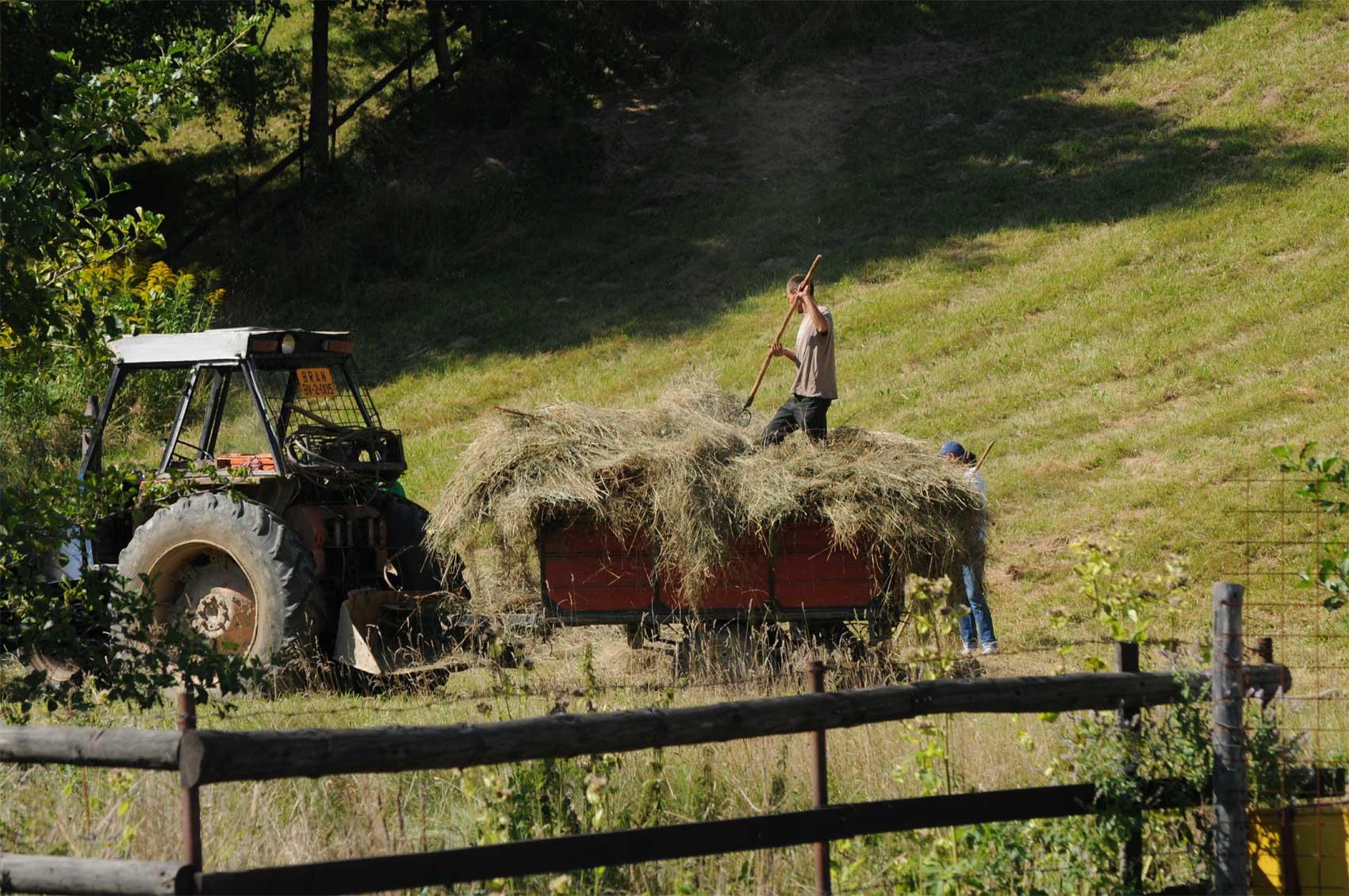 tarani-tractor