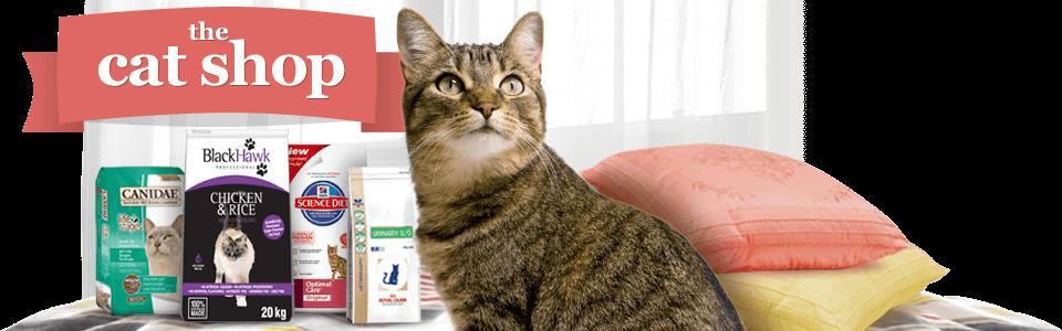 Sortimente de mancare pentru pisicuta ta de la PetsMania